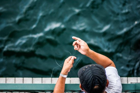 Fishing (3)